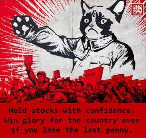 stock-cat1